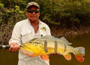 Agua Boa Amazon Lodge - Peacock Bass Fly Fishing