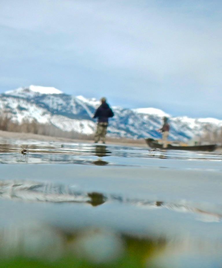 Snake river fishing report for Snake river fishing report