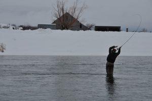 Jackson Hole Fly Fishing Guide Vance Freed