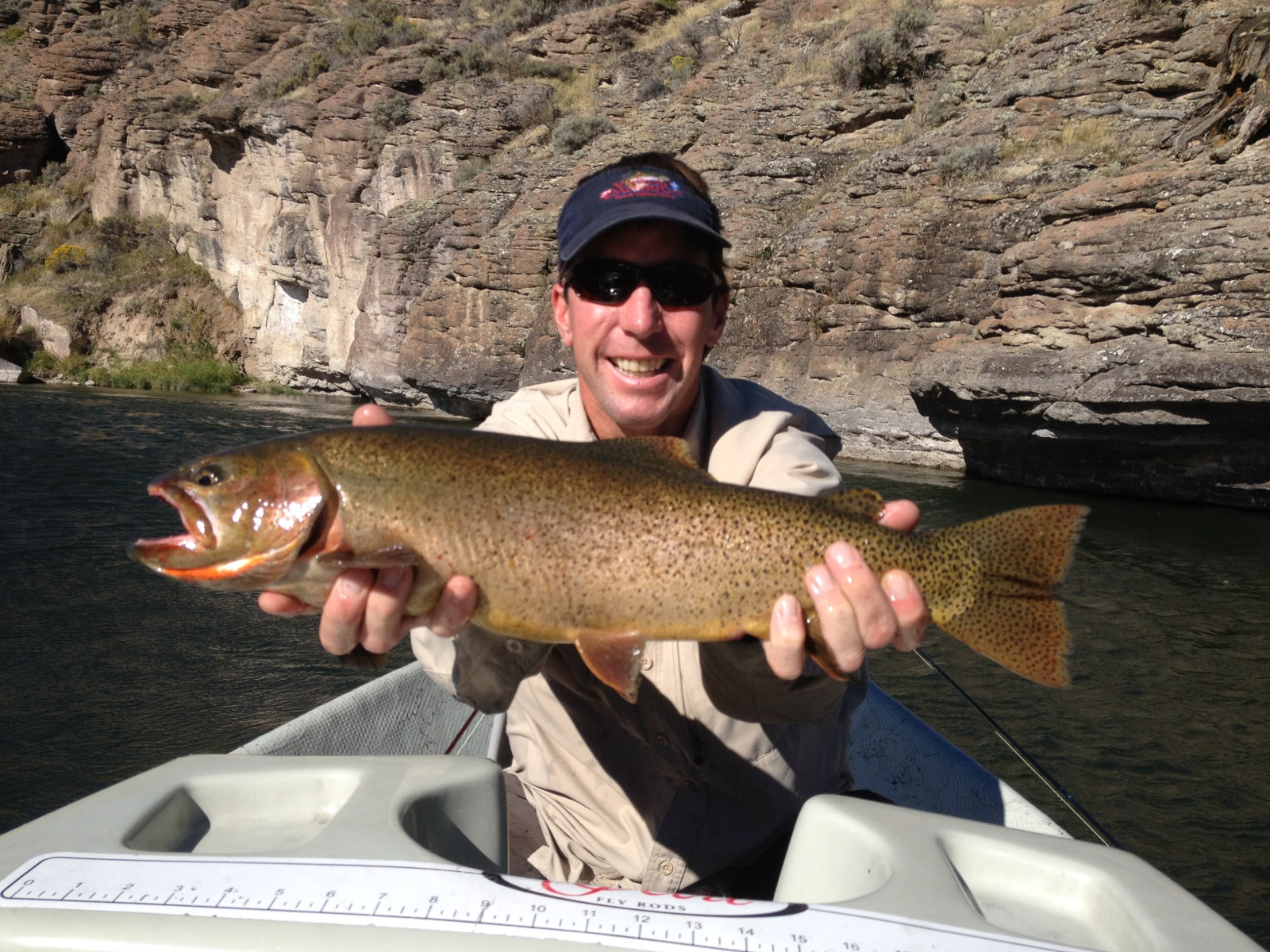 fishing reports teton river world cast anglersworld