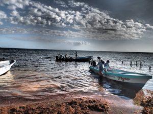 La Pescadora, Mexico - WCA Hosted Fly Fishing Trip Report
