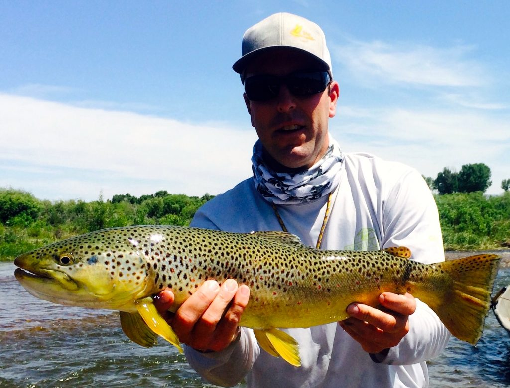 Green River Fishing Report