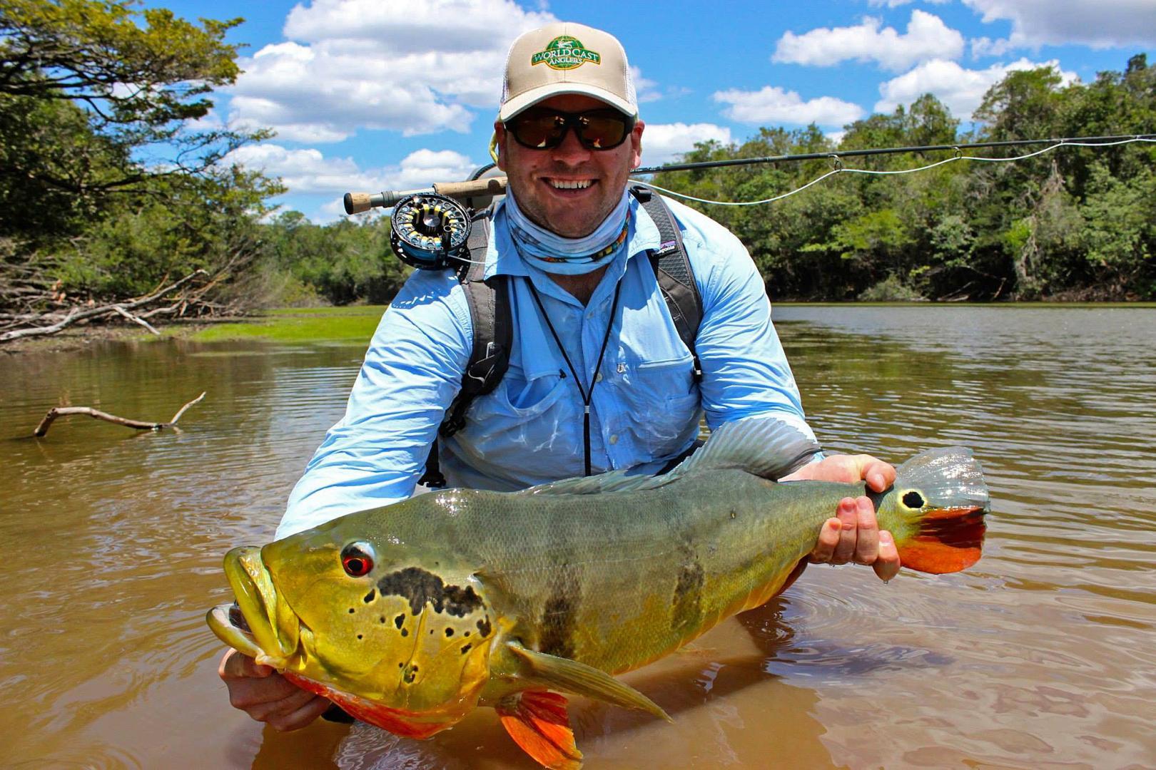Peacock bass agua boa amazon lodge 2015 worldcast anglers for Fly girl fishing charters