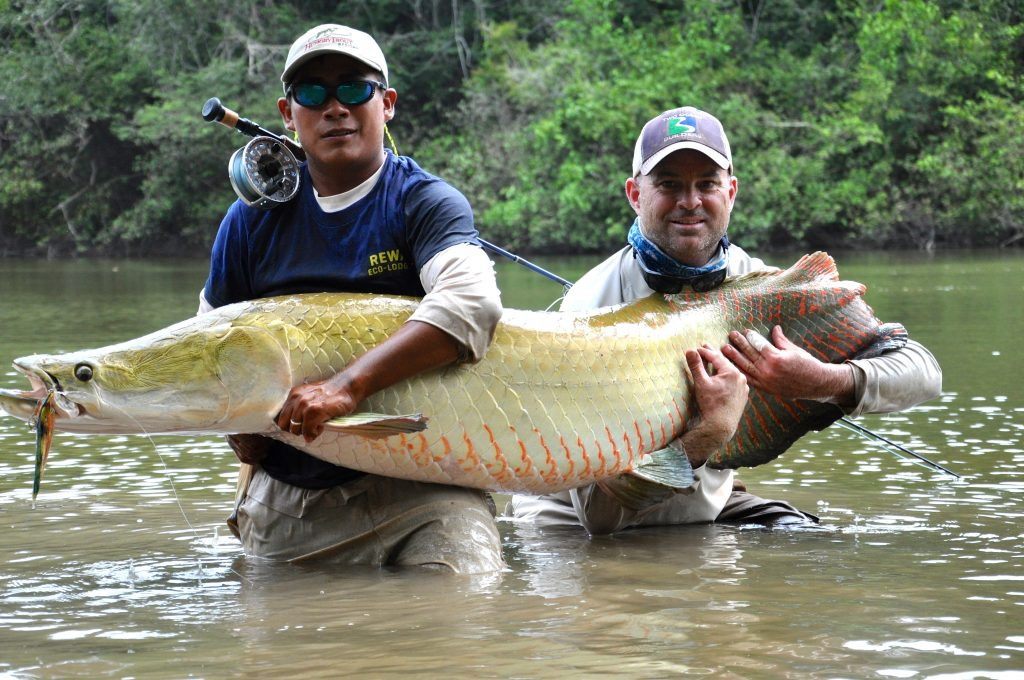Rewa Eco Lodge - Arapaima Fly Fishing