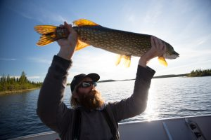 Selwyn Lake Lodge, Canada – Pike Fly Fishing Hosted Trip