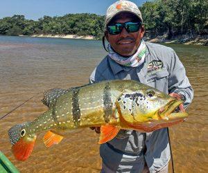 Agua Boa Amazon Lodge Peacock Bass Report