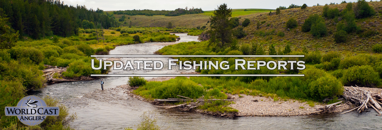 fishing-reports-slider-with-logo-II