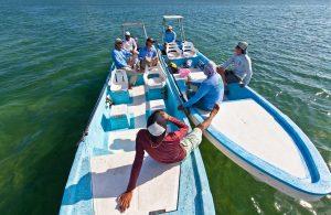 La Pescadora Fly Fishing Lodge - Mexico Fly Fishing