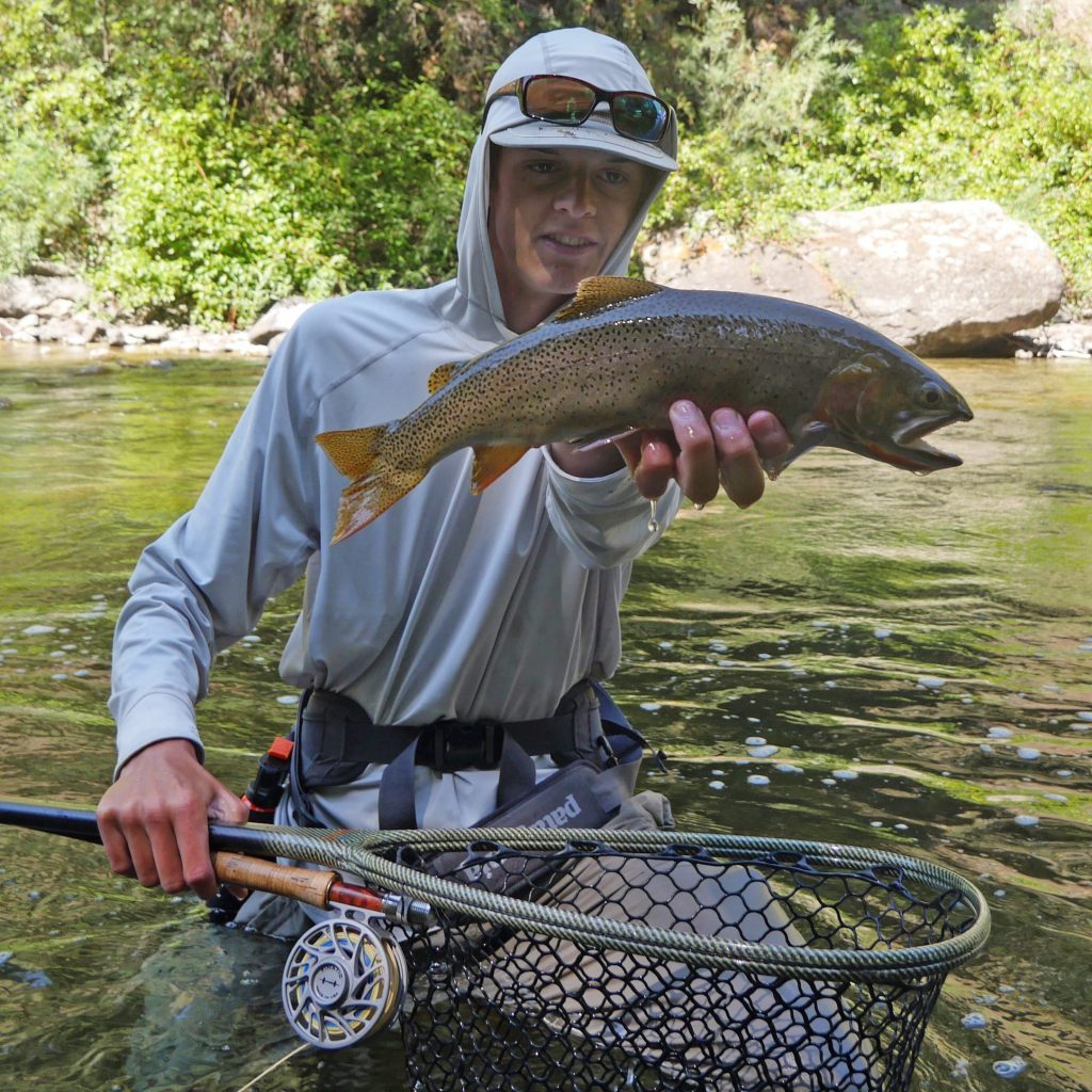 Walk Wade Jackson Hole Fishing Report