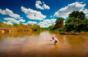 Tourette Fishing
