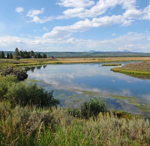 Idaho might close harriman state park worldcast anglers for Harriman state park fishing