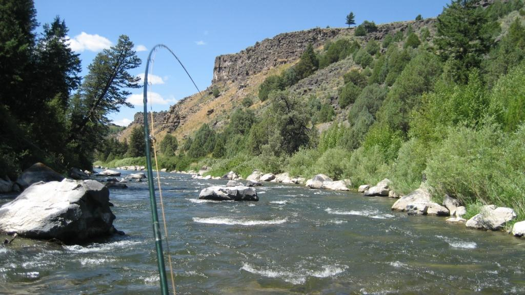 Teton dam project top five worst worldcast anglers for Best fishing in idaho